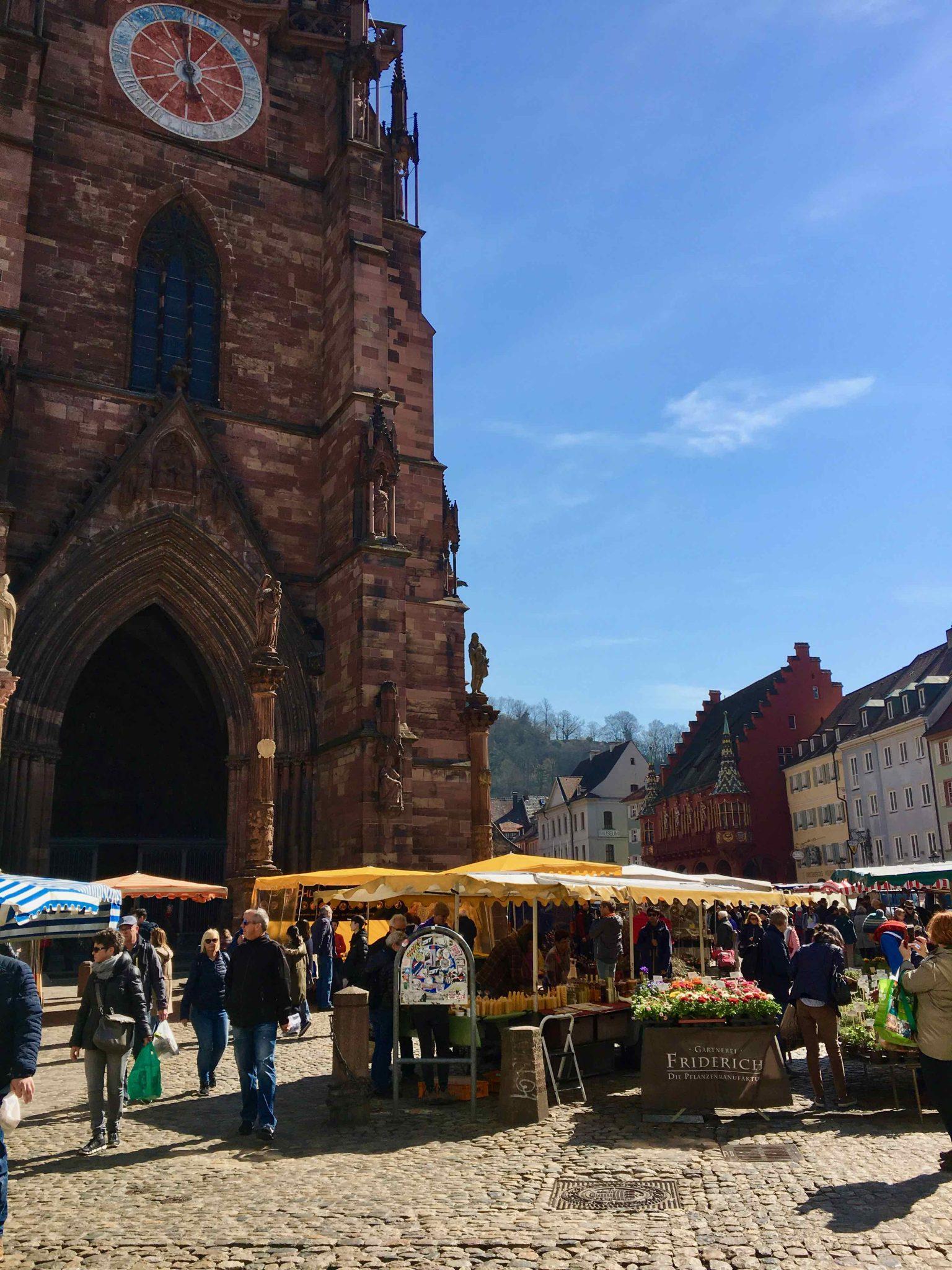 Rhababerglück - Freiburg Münstermarkt