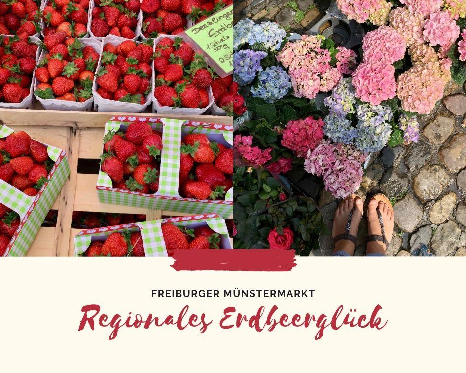 Erdbeerglück auf dem Freiburger Münstermarkt