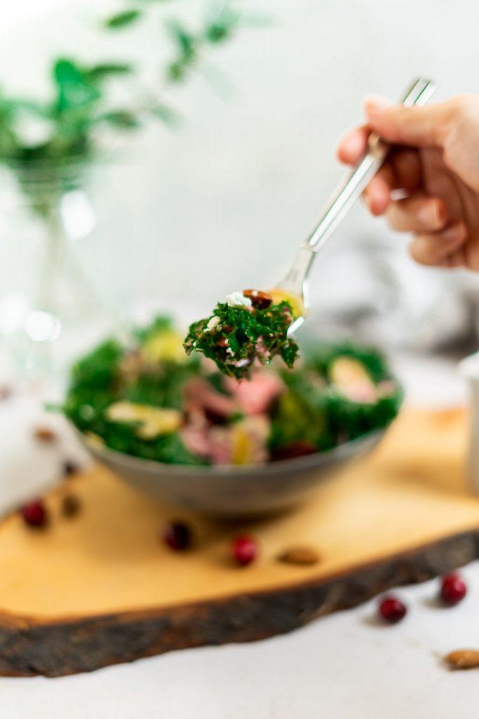 Grünkohlsalat mit Cranberry Vinaigrette